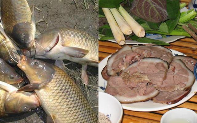 Cùng Ngonaz tìm hiểu xem ăn thịt chó kiêng kỵ gì để tránh vạ lây 6
