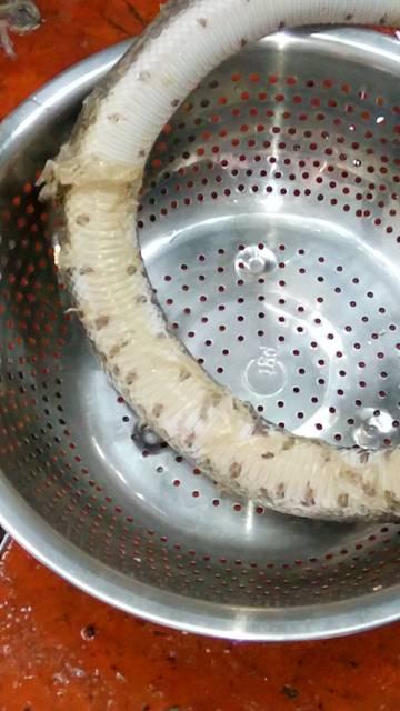 Khám phá miền Tây với cách nấu cháo rắn đậu xanh cực độc đáo này 2