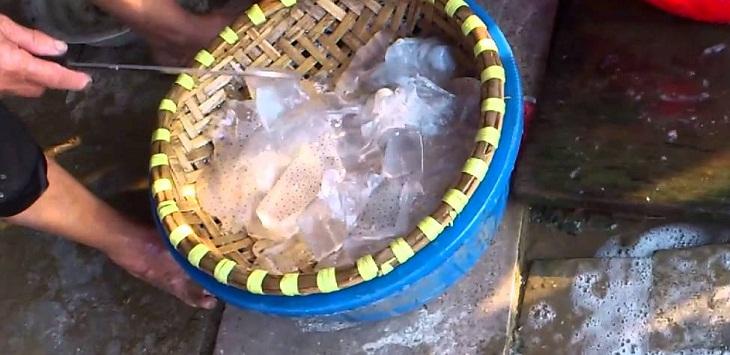 Sơ chế sứa biển tươi 2