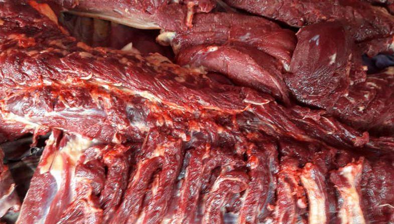 Chọn thịt ngựa