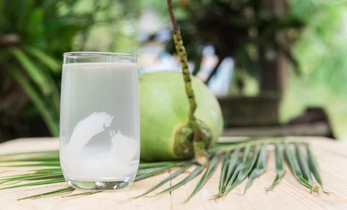 Uống nước dừa nhiều có tốt không 1