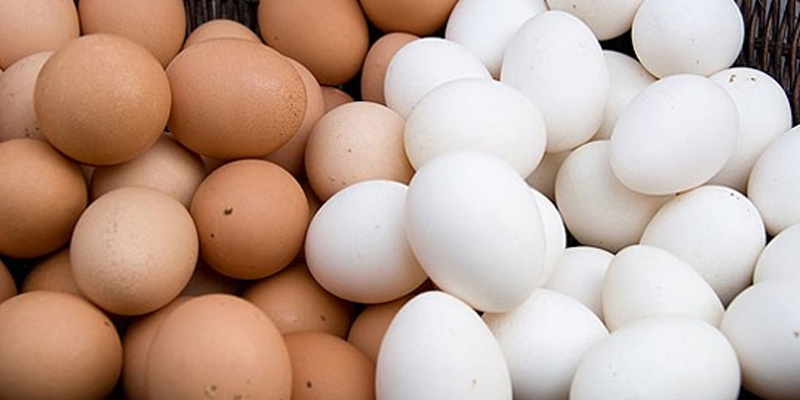 1 quả trứng bao nhiêu calo? Cùng khám phá những sự thật thú vị 3