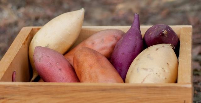 ăn khoai lang thay cơm có tốt không