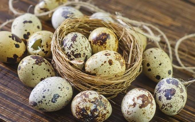 ăn trứng cút lộn có tăng cân không 3