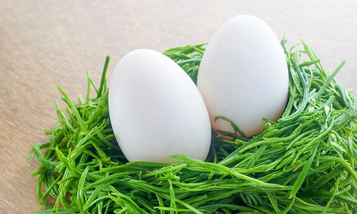 bà bầu ăn trứng ngỗng có tác dụng gì 1