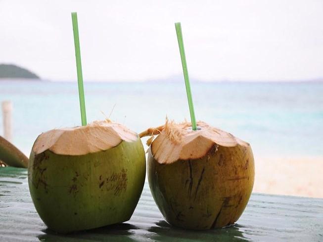 Nước dừa có chất gì mà mang lại nhiều công dụng tuyệt vời đến vậy? 1