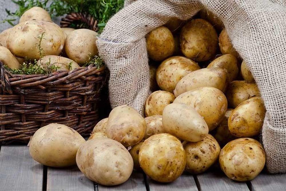 ăn khoai tây có tốt không