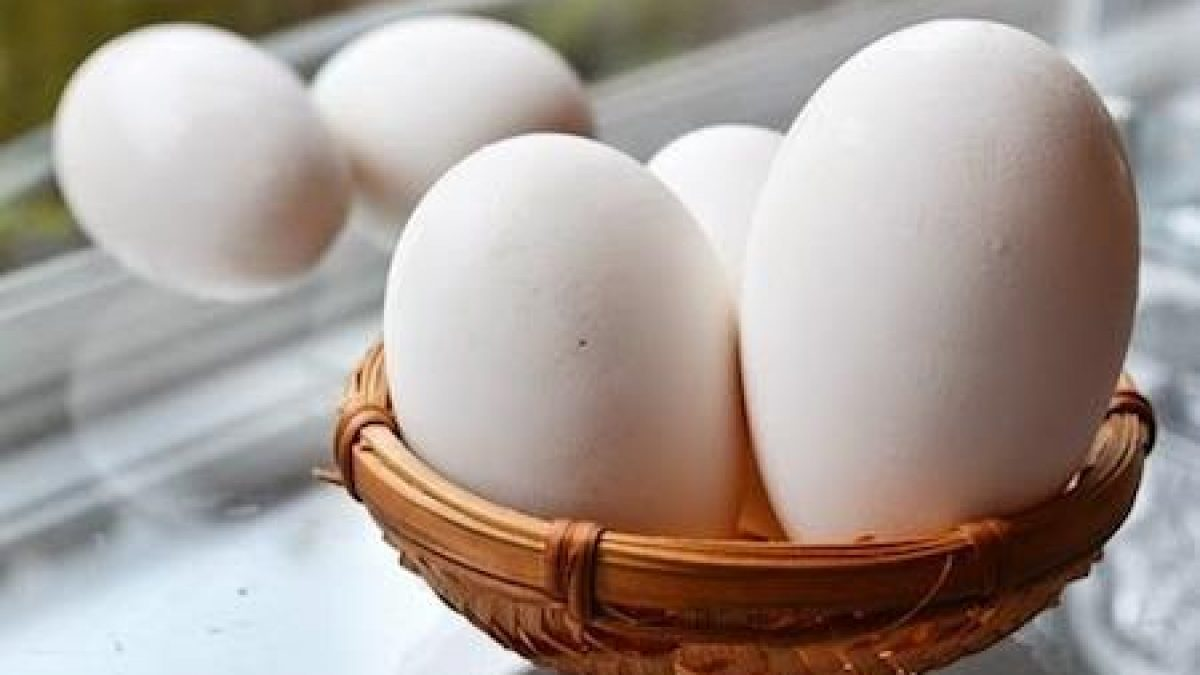 tác dụng của trứng ngỗng 3