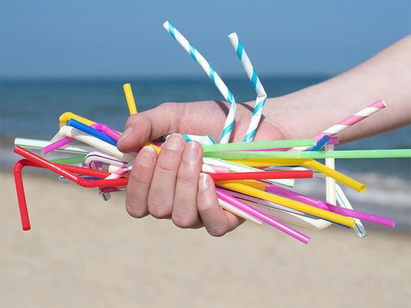 Hạn chế sử dụng các loại đồ dùng làm từ nhựa