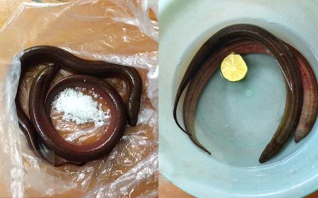 cách làm lươn khô
