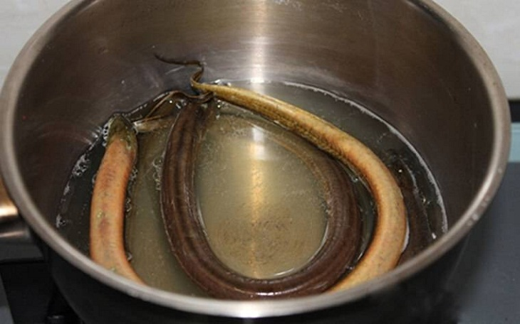 cách làm lươn kho gừng