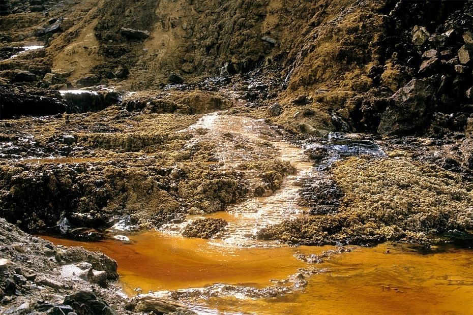 Ô nhiễm đất khiến môi trường đất xuống cấp trầm trọng