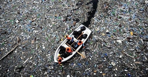 """""""Bãi rác"""" Thái Bình Dương"""