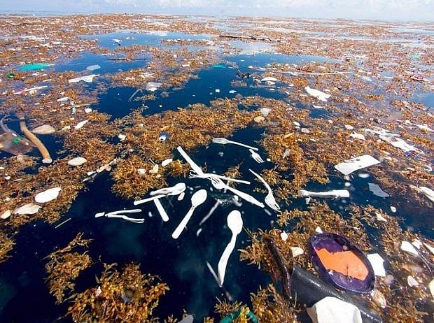Vùng biển Caribe bị ô nhiễm rác thải nhựa