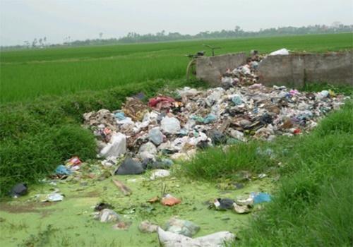 Hình ảnh về ô nhiễm đất 5