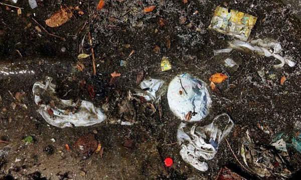 Vùng Vịnh Guanabara ô nhiễm ở Rio de Janeiro, Brazil.