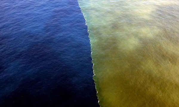 Hình ảnh nước lũ bùn gặp sông Macleay ở thị trấn South West Rocks thuộc New South Wales, Australia.