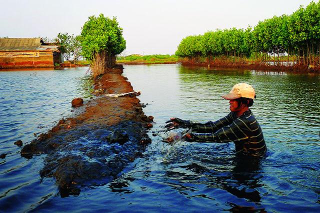 Con người gây ra ô nhiễm môi trường nước