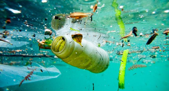 ô nhiễm môi trường là một vấn nạn hiện nay