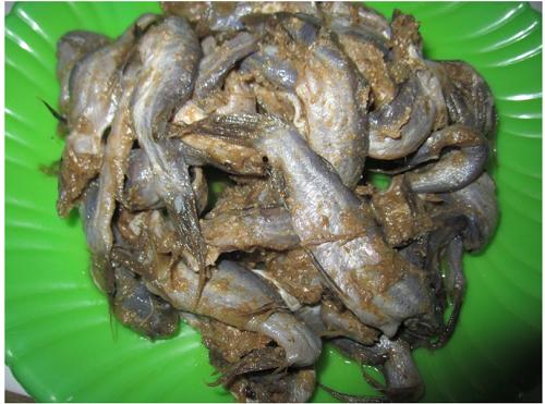 Mắm cá chốt Bạc Liêu