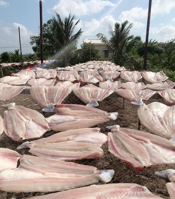 Cá dứa một nắng Cần Giờ - Sài Gòn