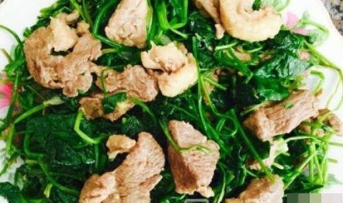 thịt thỏ xào rau má