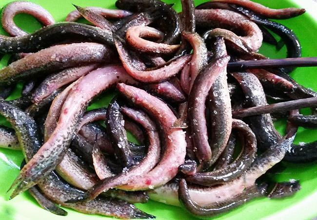 cá chạch chiên giòn lá lốt 2