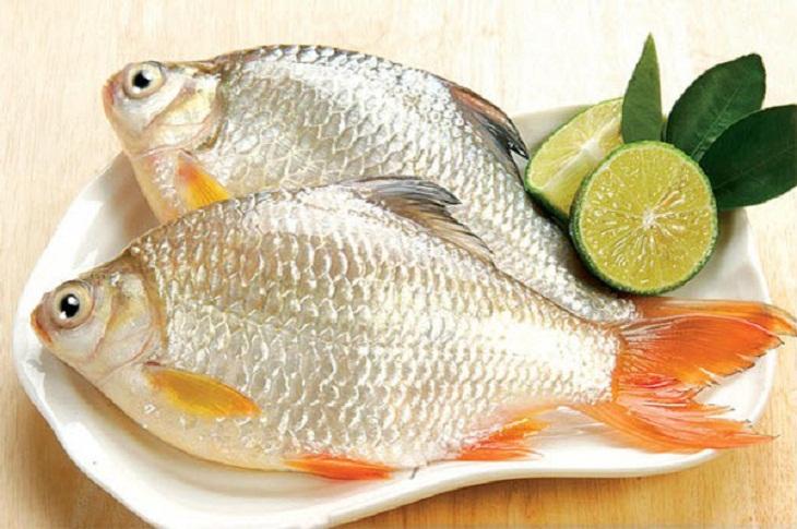 bảo quản cá 1