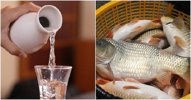 bảo quản cá khi không có tủ lạnh 2