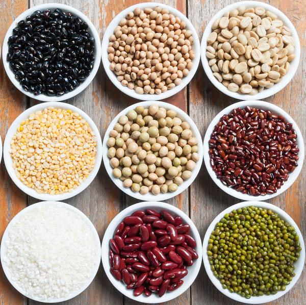 bảo quản hạt giống 1