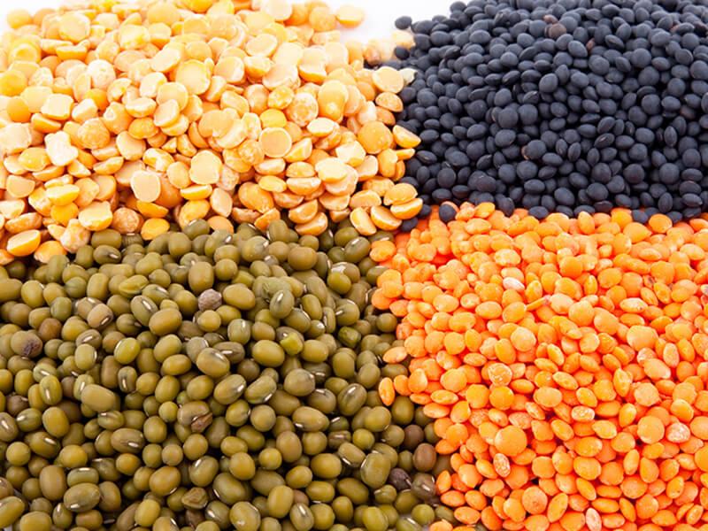 bảo quản hạt giống 2