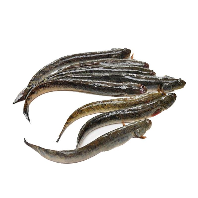 giá cá kèo
