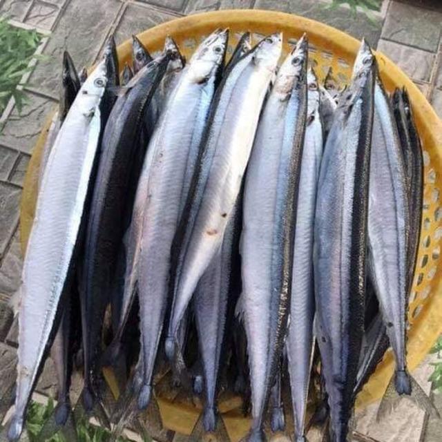 giá cá kìm