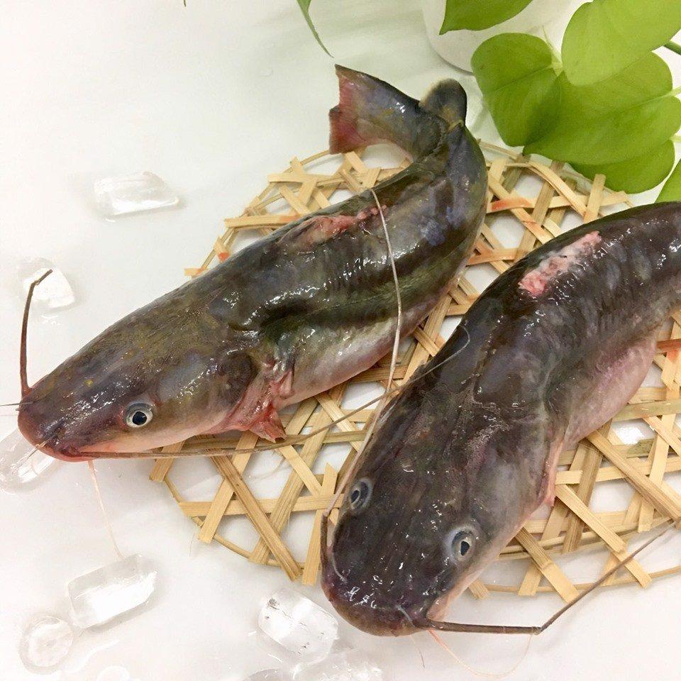 giá cá lăng