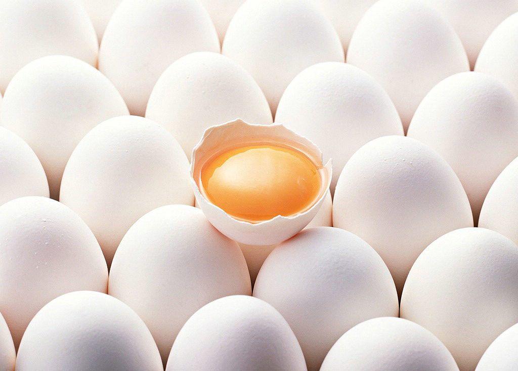 giá trứng vịt lộn hiện nay | Món Miền Trung