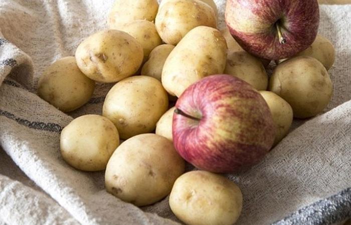 những lưu ý khi bảo quản khoai tây 2