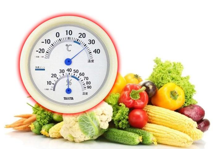 những yếu tố ảnh hưởng đến cách bảo quản rau trong tủ lạnh 1