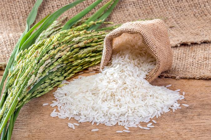 tại sao phải bảo quản gạo đúng cách 1