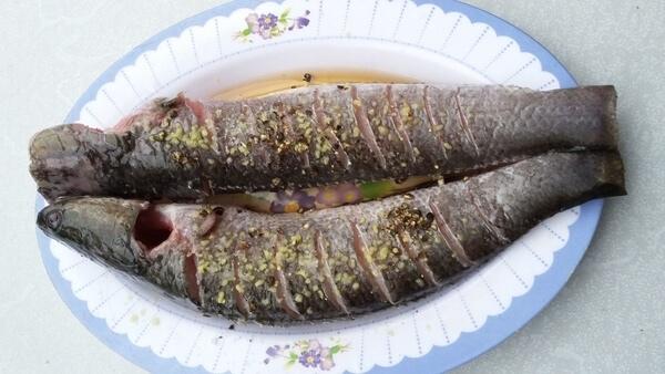 cá lóc nướng giấy bạc 3