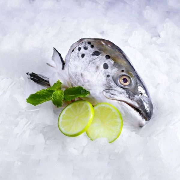 Cách làm đầu cá hồi nướng muối ớt 2