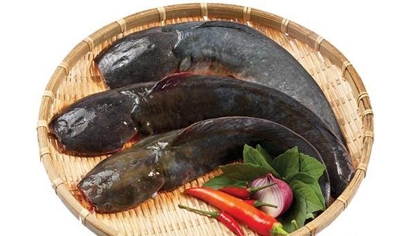 Cách nấu cá trê om riềng mẻ 2