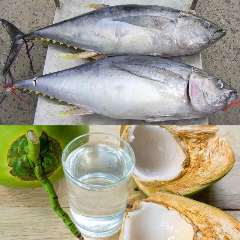 Cá ngừ kho nước dừa 2