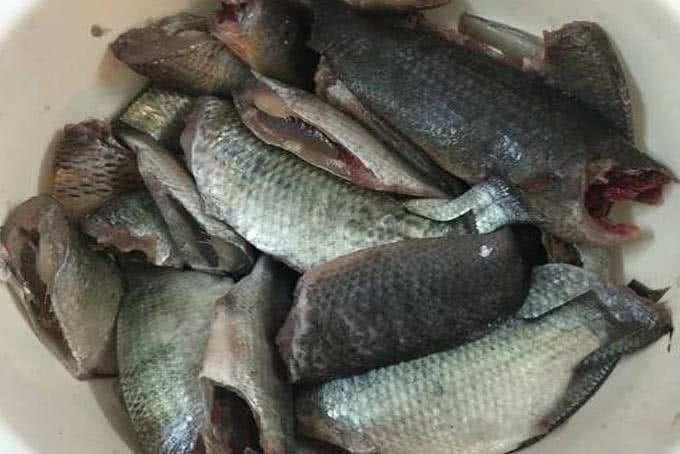 Cách làm cá rô kho tiêu 5