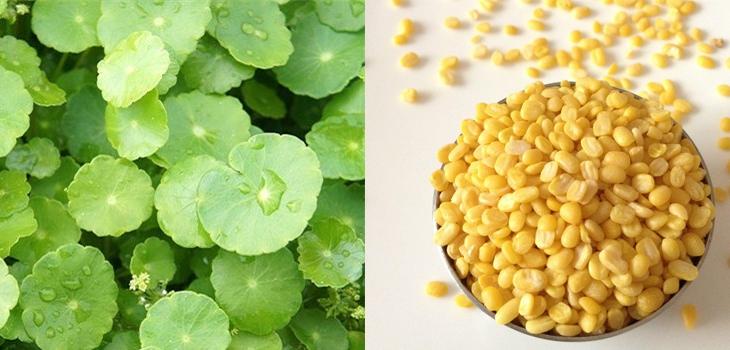 cách làm rau má đậu xanh 2