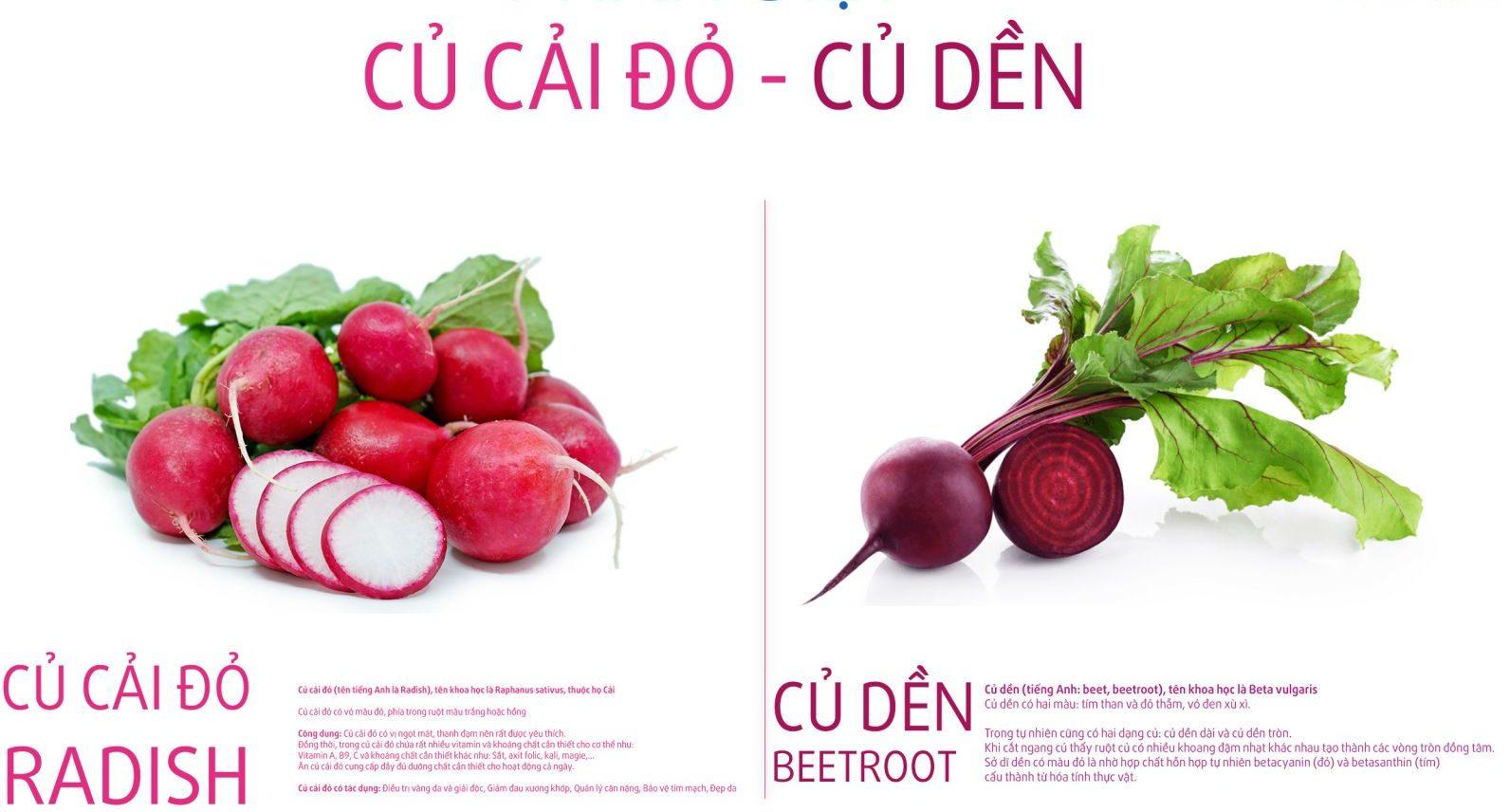 củ cải đỏ 3