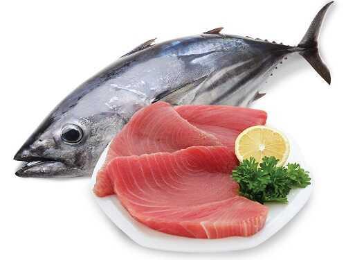 Giá cá ngừ đại dương 1
