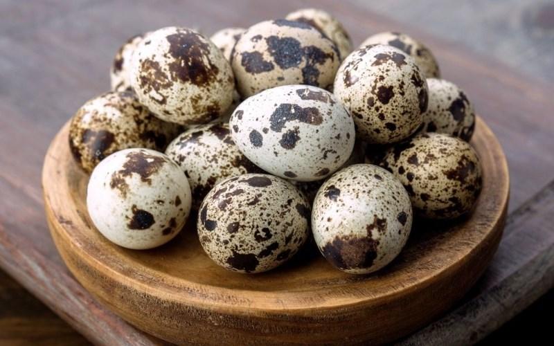 Luộc trứng cút lộn 5