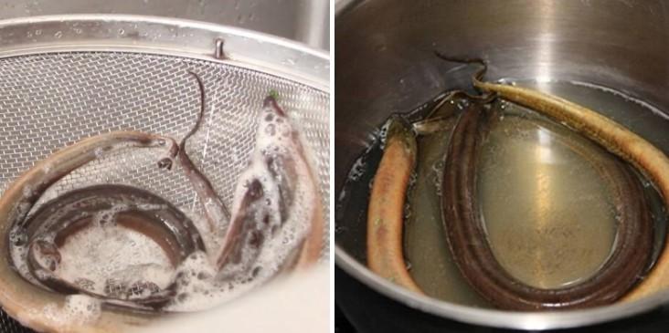 cách nấu súp lươn 3